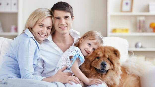 Wills & Trusts dog-young-family Direct Wills Eaton